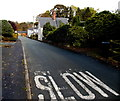 SJ2937 : SLOW on Quinta Terrace, Chirk Bank by Jaggery