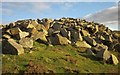 SX2670 : Quarry spoil, Caradon Hill by Derek Harper