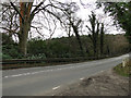 TG2727 : The road past Captains Pond, Westwick by Adrian S Pye