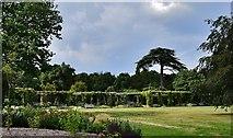 SU8612 : West Dean Gardens by Michael Garlick