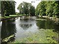 TL8782 : River Little Ouse at Nun's Bridges by Adrian S Pye