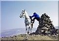 NT8014 : A horse rider at Callaw Cairn by Walter Baxter
