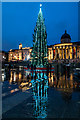 TQ3080 : Christmas Tree, Trafalgar  Square, London W1 by Christine Matthews
