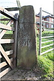NY6820 : Benchmark on Banks Lane gatepost by Roger Templeman