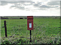TG4003 : Postbox on Limpenhoe Road by Adrian S Pye