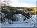 SE2102 : Ecklands Bridge by steven ruffles