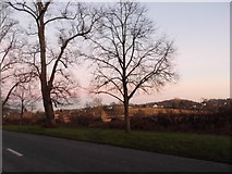TQ1549 : View by the A25, Dorking by David Howard