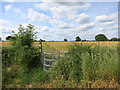 SO4150 : Footpath Gate by Des Blenkinsopp