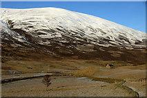 NO1485 : Newbigging, Glen Clunie by Mike Pennington
