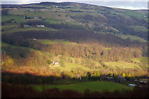 SE0026 : View across the Calder Valley to Broad Bottom Wood, Long Royd and Burlees Wood by Phil Champion