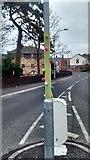 J3774 : East Belfast guerilla knitting Christmas tree by John Thompson