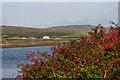 L6252 : Across Streamstown Bay by Ian Capper