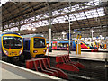 SJ8497 : Assorted trains at Manchester Piccadilly by Stephen Craven