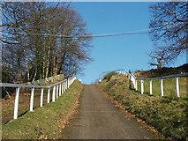 TQ0762 : Brooklands test hill by Alan Hunt