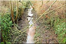 J2967 : The disused McQuiston's (no 7) Lock, Lagan Canal, Drumbeg/Ballyskeagh (December 2014) by Albert Bridge