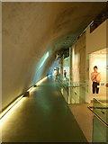 TQ2679 : Darwin Centre, Natural History Museum, London by David Hallam-Jones
