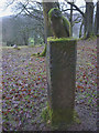 SD3391 : 'Meridian Owl', a sculpture at Grizedale Forest by Karl and Ali