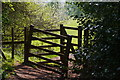 SO9379 : Kissing gate on a footpath towards Clent parish church by Phil Champion