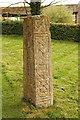 TF0119 : Anglo-Saxon cross shaft by Richard Croft