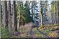 NT4226 : Woodland track, Weatherhouse by Jim Barton