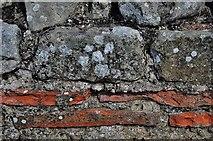 SJ5608 : Wroxeter Roman City, Viroconium;  The Market Hall by Michael Garlick