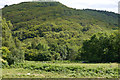 SH6515 : View towards Coed-y-garth from the lower camping fields at Graig Wen by Phil Champion