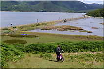 SH6515 : Pushing a bike down to the Mawddach Trail from the campsite at Graig Wen by Phil Champion