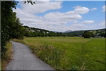 SH7217 : The Mawddach Trail approaching Dolgellau town centre  by Phil Champion