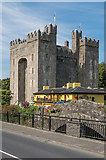 R4560 : Bunratty Castle, Durty Nelly's and Bunratty Bridge by Ian Capper