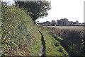 TG0410 : Colgate Lane by N Chadwick
