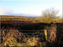 H2990 : Lisdoo Townland by Kenneth  Allen