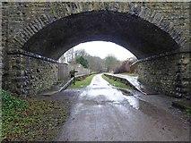SK1971 : Former station platforms ahead for Thornbridge Hall on the Monsal Trail by Steve  Fareham
