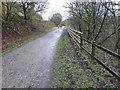 SK1573 : A quiet wet Monsal Trail in early January by Steve  Fareham