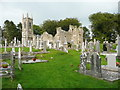 S7237 : Ruined church and graveyard at St Mullin's by Humphrey Bolton