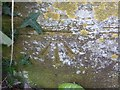 ST5312 : Benchmark, Park Lodge, East Coker by Becky Williamson