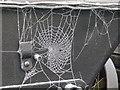 SK2625 : Frozen webs on the Jubilee tub by Alan Murray-Rust