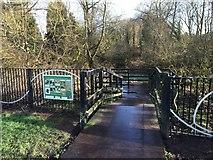 SJ8545 : Lyme Valley Park: wildlife basin by Jonathan Hutchins