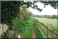 TM2247 : Fynn Valley Walk by N Chadwick