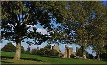 TQ7825 : Bodiam Castle by Michael Garlick