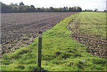TG0509 : Footpath south of Colegate Lane by N Chadwick
