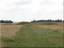 SU1142 : Tumulus group near Stonehenge  by Stephen Craven