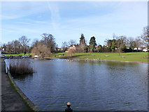 TL6222 : Doctor's Pond, Great Dunmow by Robin Webster