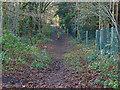 SU8263 : Former access road by Alan Hunt