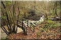SO7570 : Footbridge over brook by Philip Halling