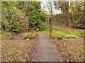 SD5428 : Frenchwood Knoll Wildlife Garden by David Dixon