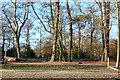 TQ0083 : Overflow car park, Black Park Country Park by Robin Webster