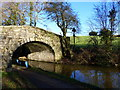 """SO3004 : """"Bridge 66"""" on the Monmouthshire and Brecon Canal by Ruth Sharville"""
