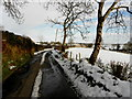 H5365 : Wintry along Clogherny Road by Kenneth  Allen