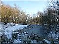 NS8660 : Frozen pond, Hillhouseridge by Alan O'Dowd