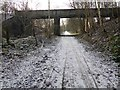 SK4479 : National Cycle route 67 by Steve  Fareham
